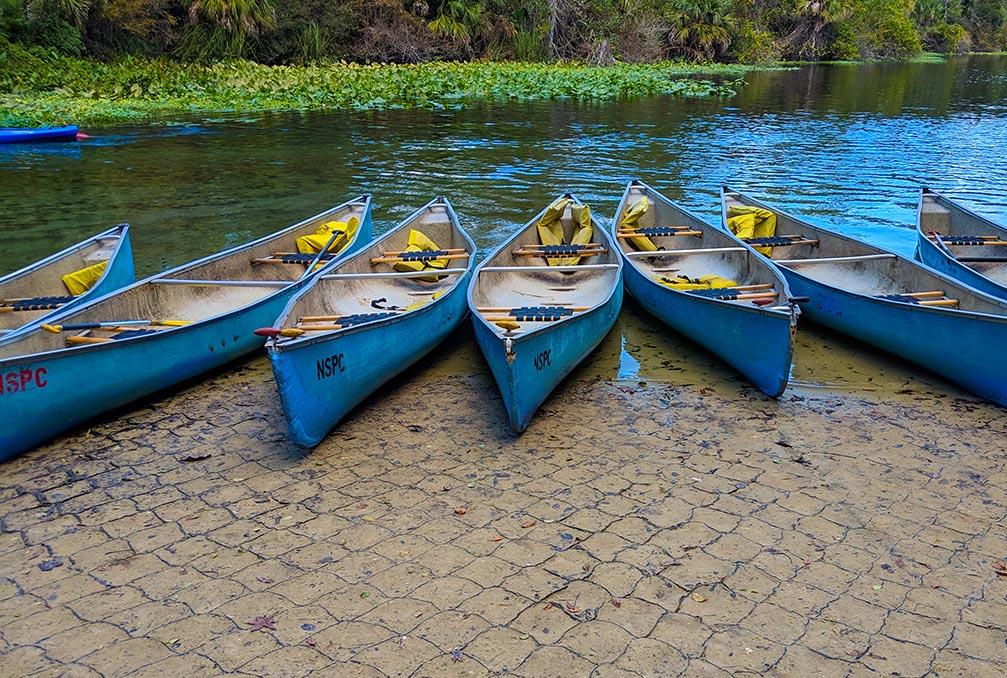 A very Potter Thanksgiving Wekiwa Springs Kayak line up