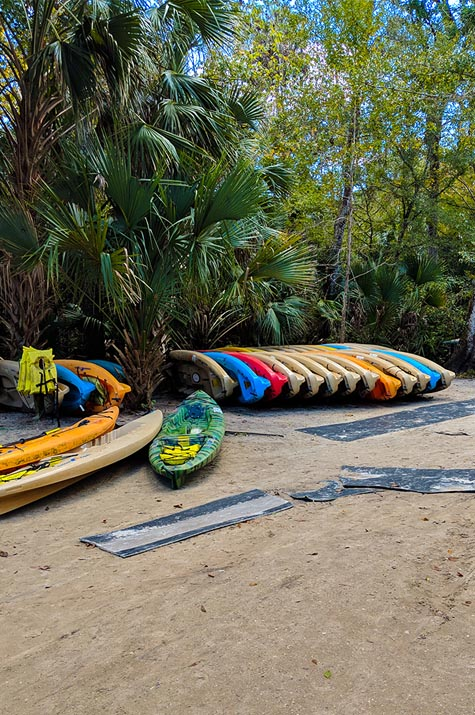 A very Potter Thanksgiving Wekiwa Springs Canoes