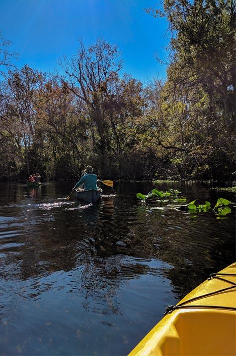 A very Potter Thanksgiving Wekiwa Springs kayaking