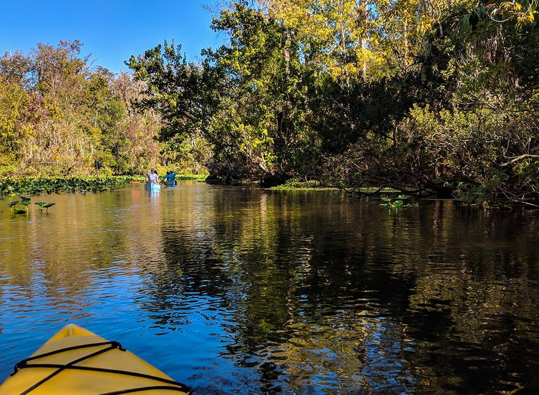 A very Potter Thanksgiving Wekiwa Springs Kayak view