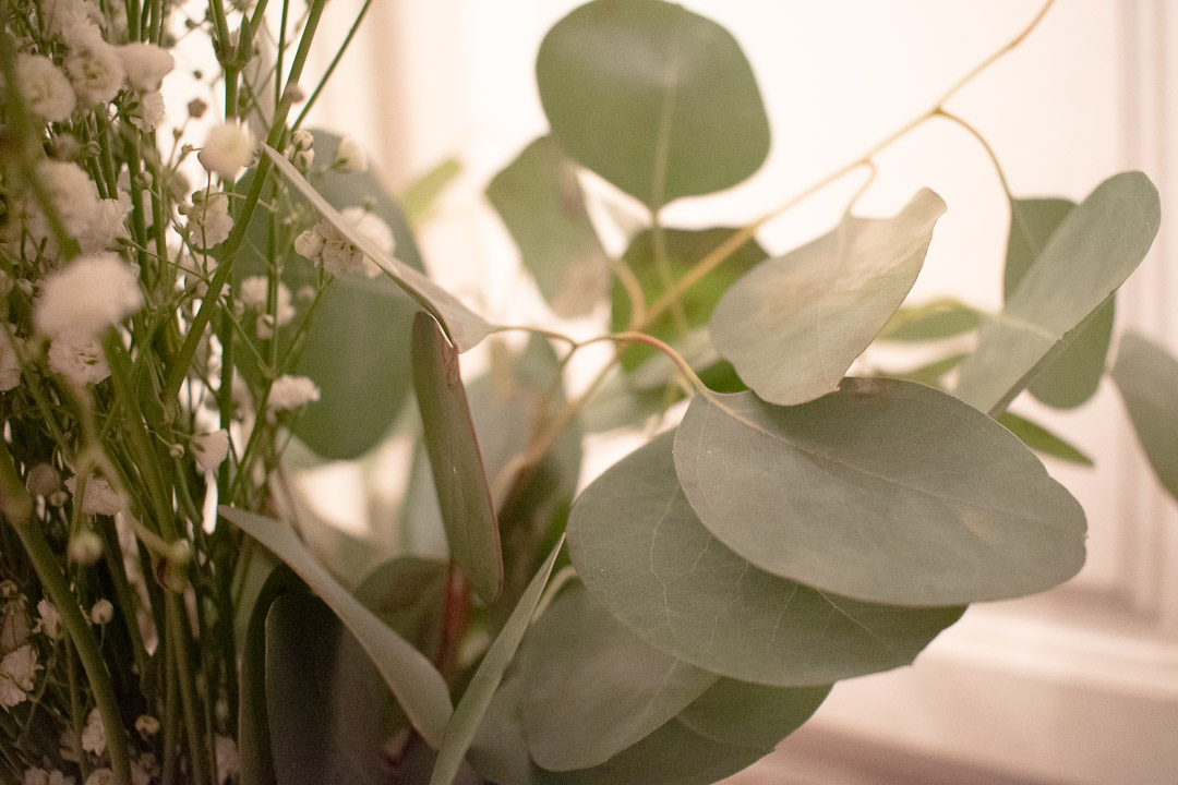 Spa Flowers: Eucalyptus and Baby's breath