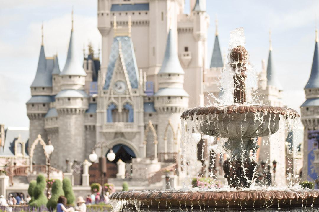 Magic Kingdom Trip_Castle and fountain