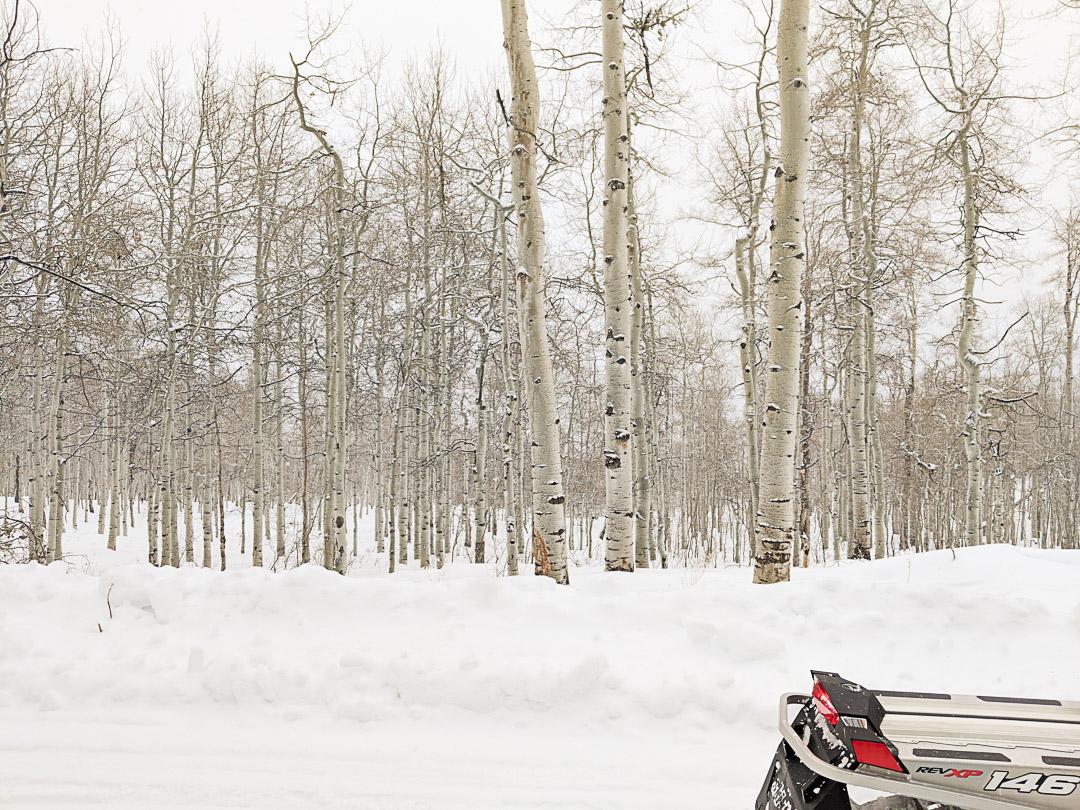 Utah Ski Trip-7