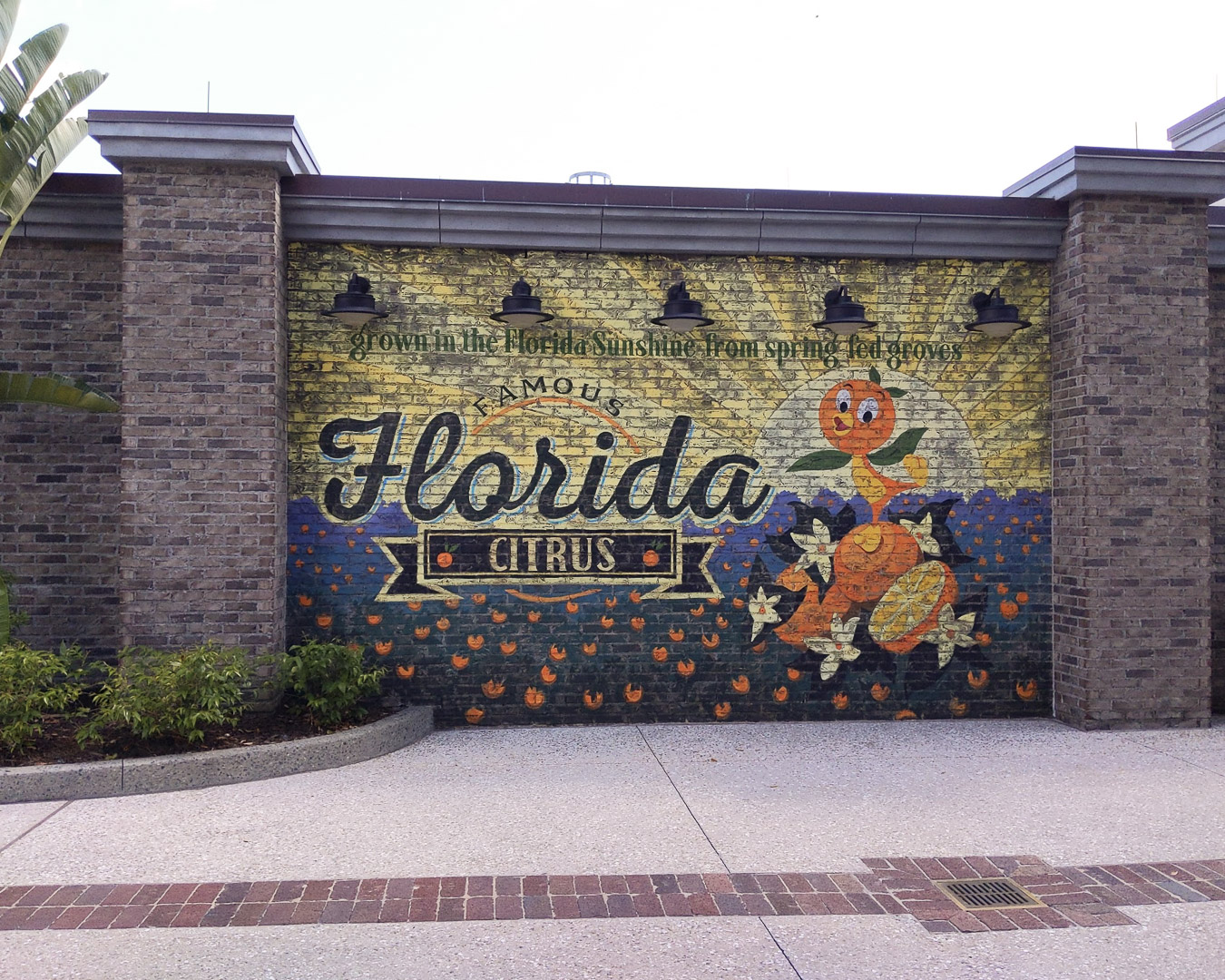 Disney Springs Reopening Citrus wall